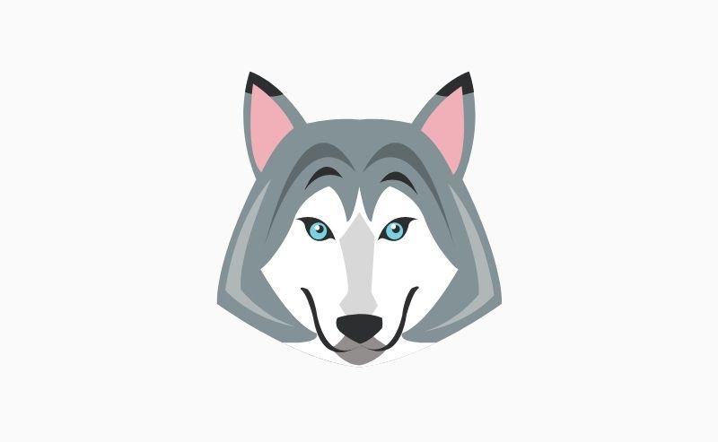 Déguisement Loup